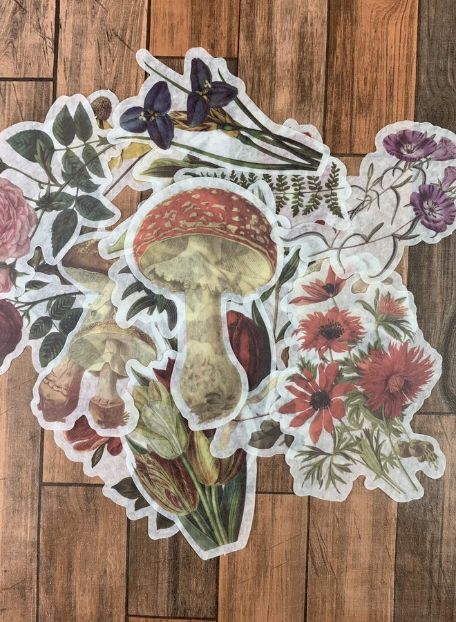 Stickers | Red flowers