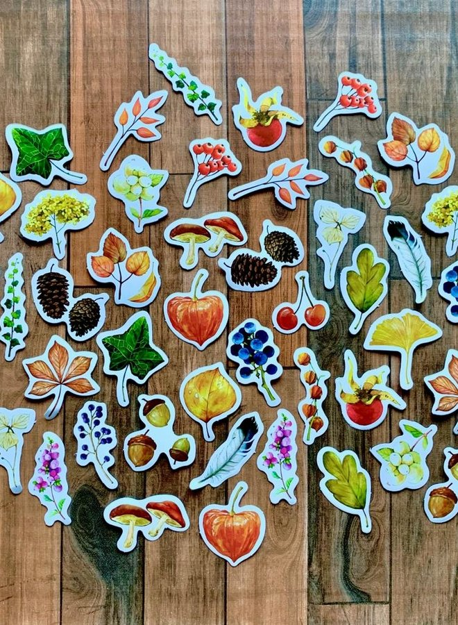 Stickers | Natuurlijke herfst