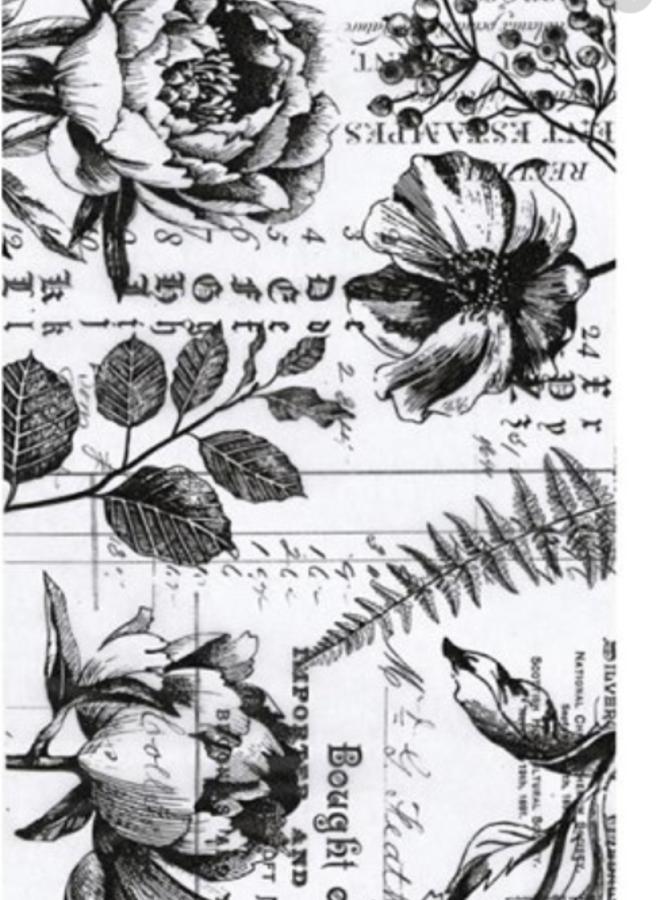 Tim Holtz   Botanical
