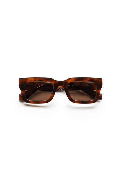 Sunglasses 05 - Tortoise