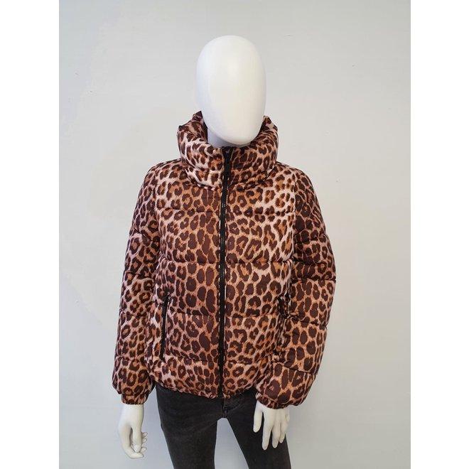 Jas Leopard print