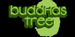 Buddhas Tree Coco A&B