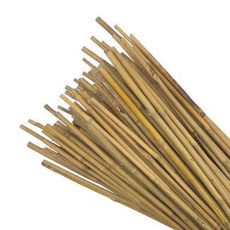 Non Branded Bamboo