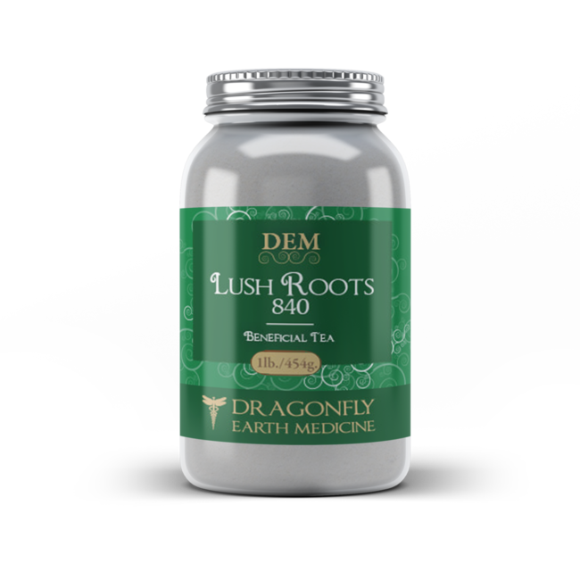 Dragonfly Earth Medicine Lush Roots