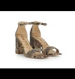 Sam Edelman Sam Edelman Daniella heel sandal multicolor