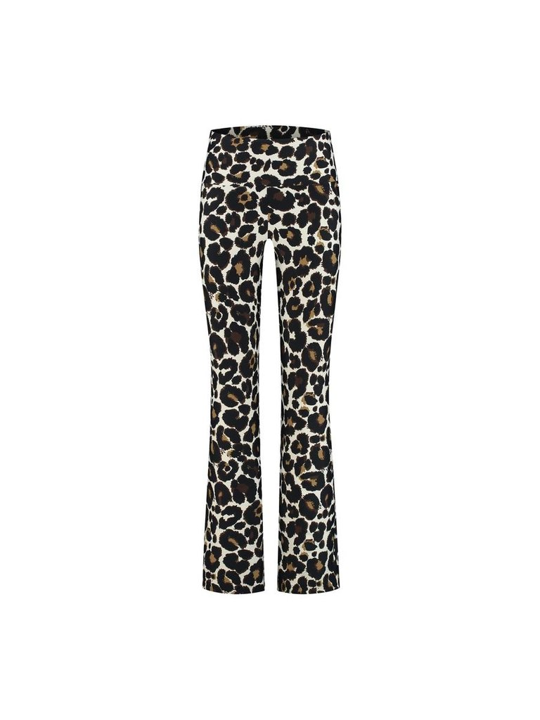 deblon sports Deblon Sports flared leggings celine leopard
