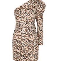 Lavish Alice Lavish Alice One shoulder ruffle jurk luipaard print multicolor