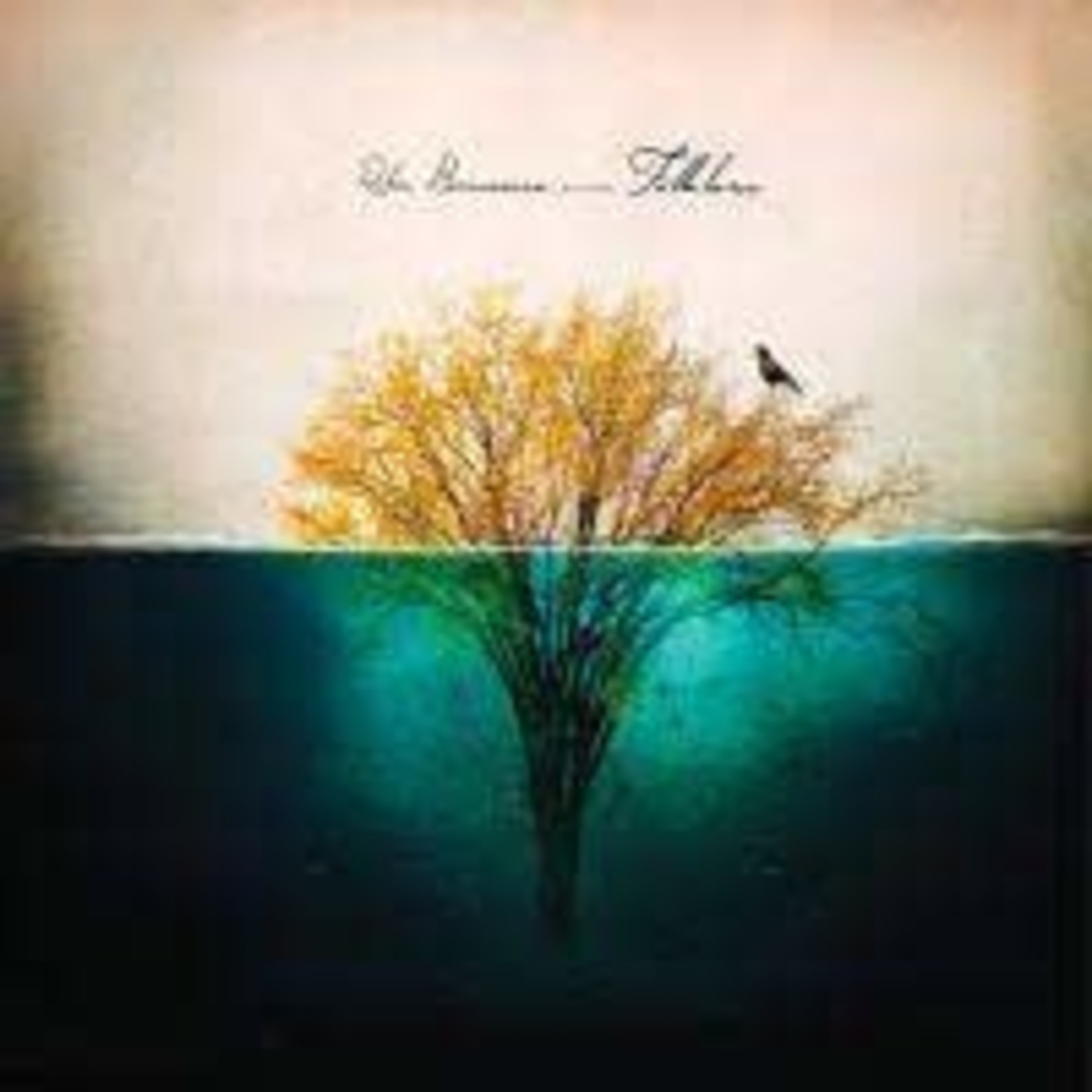 BORNEMAN_ ROBIN - FOLKLORE I: THE.. -LP+CD- (VINYL)