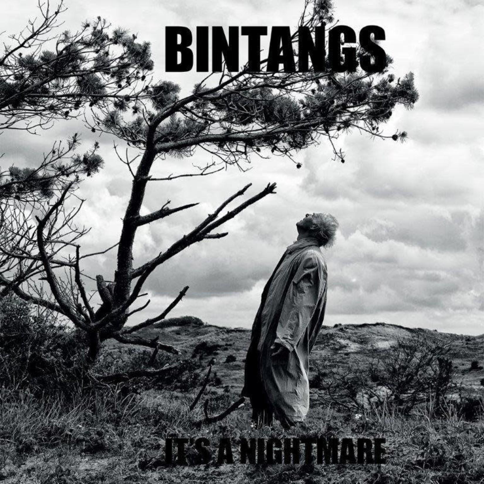 Bintangs - It's a Nightmare (VINYL)