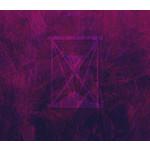 MOMENTUM - UIT HET LEVEN GEGREPEN (CD)