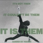 GUIDED BY VOICES - IT'S NOT THEM. IT.. (VINYL)