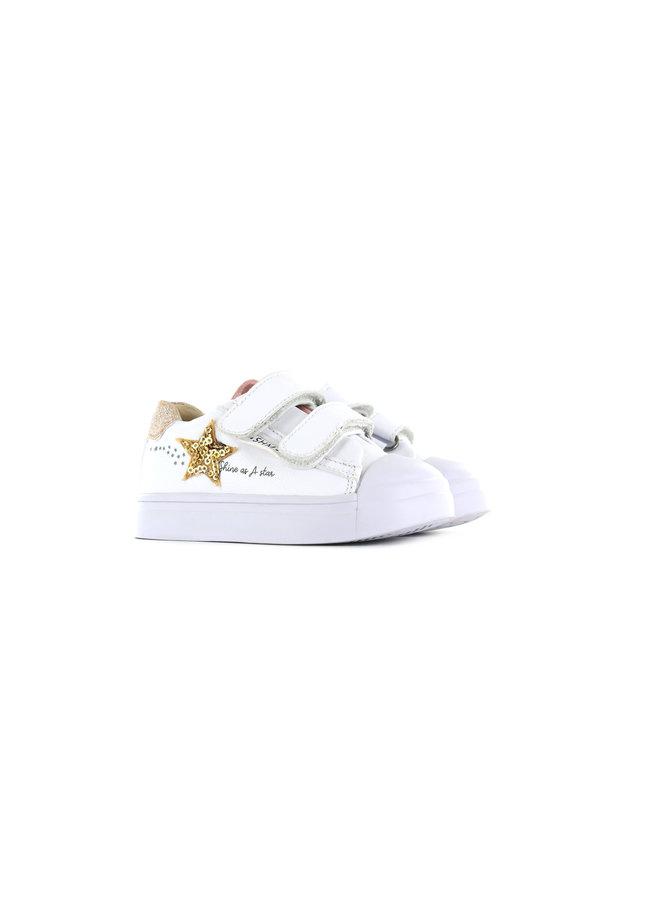 SH21S017-B White stars