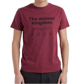 Thinking Mu - ANIMAL KINGDOM