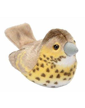 Vogels met geluid |  Zanglijster