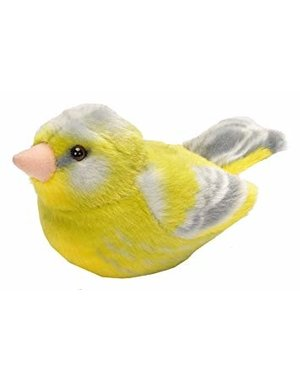 Vogels met geluid | Groenling