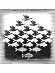 Koelkastmagneet | Sky and Water, M.C. Escher