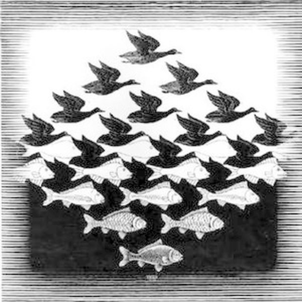 Koelkastmagneet | Sky and Water, M.C. Escher