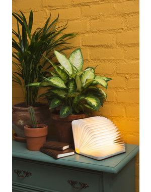 Boeklamp | Ledr