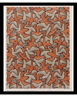 M.C. Escher | Twelve birds | Ingelijst | no. 16 - serie 57