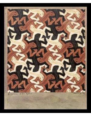 M.C. Escher | Lizard Escher | Ingelijst | no. 14 - serie 57