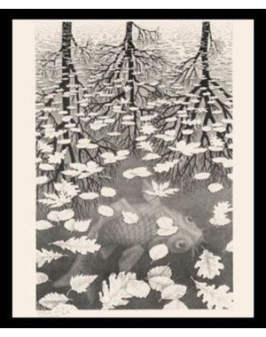 M.C. Escher | Three Worlds | Ingelijst | no. 8 - serie 57