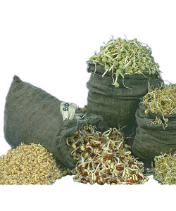 Tribest Sproutman Hemp Sprouting Bag