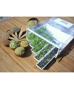 Easygreen Growing System