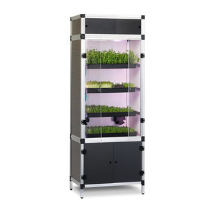 Grow Your Greens Sprouter