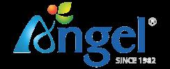 Angel Juicer (Official UK Importer)