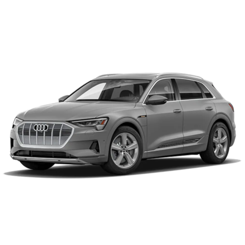 Audi e-Tron CarBags reistassenset