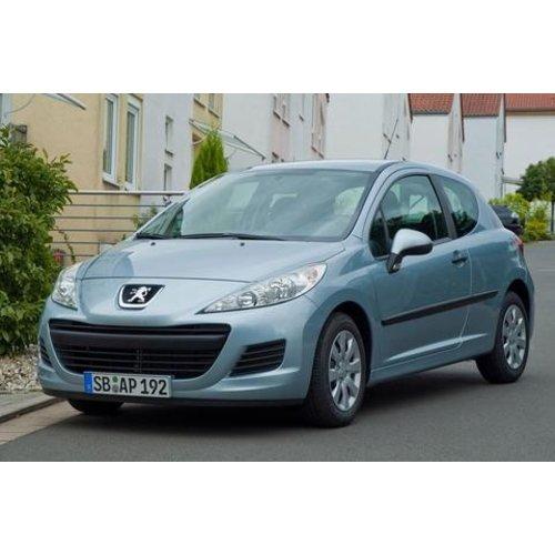 Carbags Reistassen Peugeot 207