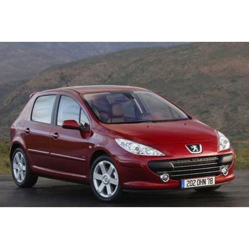 Carbags Reistassen Peugeot 307