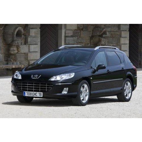 Carbags Reistassen Peugeot 407