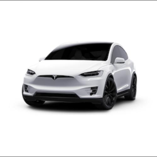 Carbags Reistassen Tesla Model X