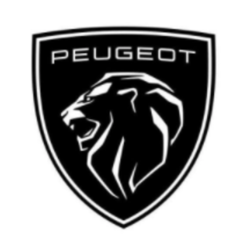 Peugeot CarBags