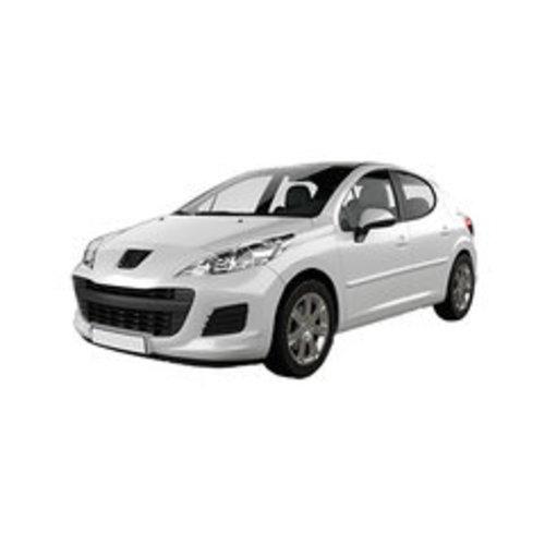 Dakdragers Peugeot 207