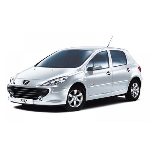 Dakdragers Peugeot 307