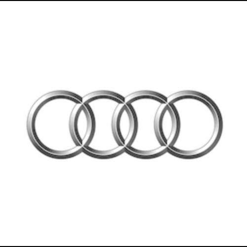 Thule dakdragers Audi