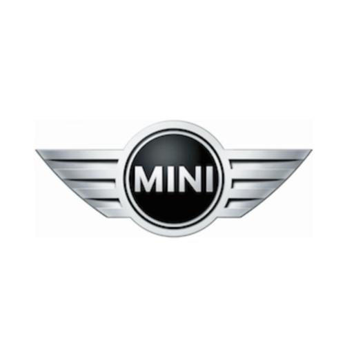 Thule dakdragers Mini