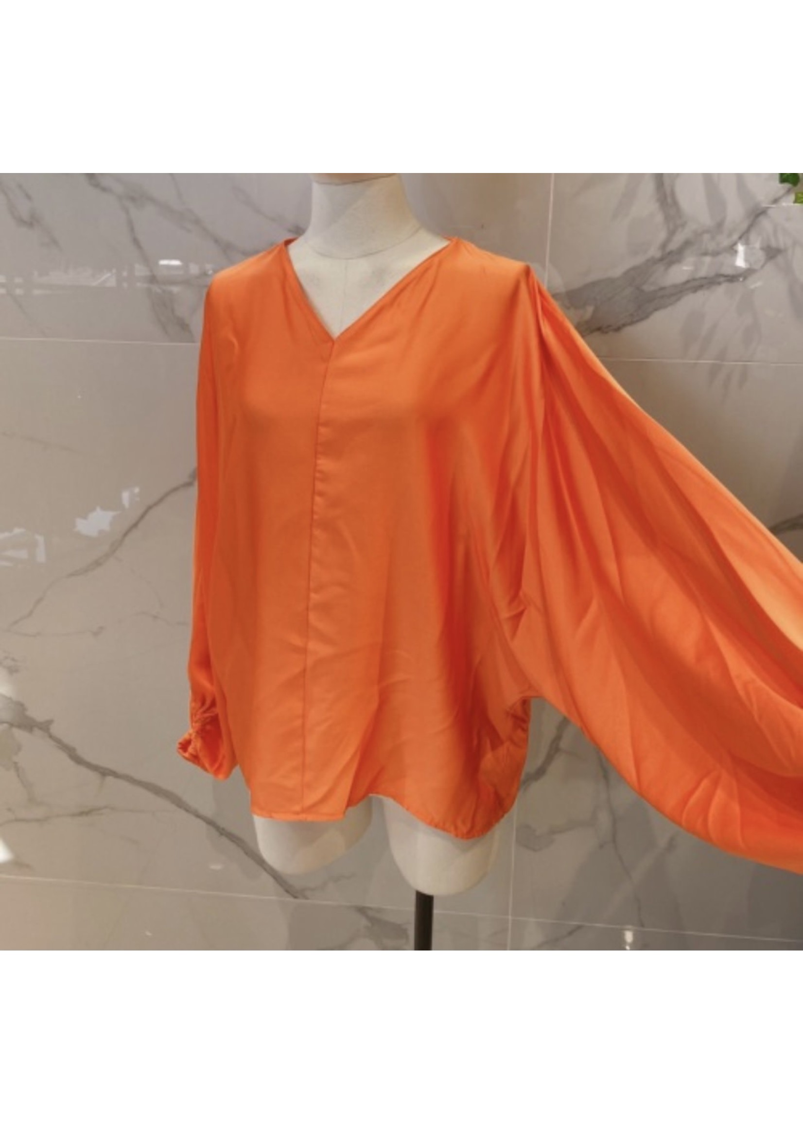 Butterfly Blouse