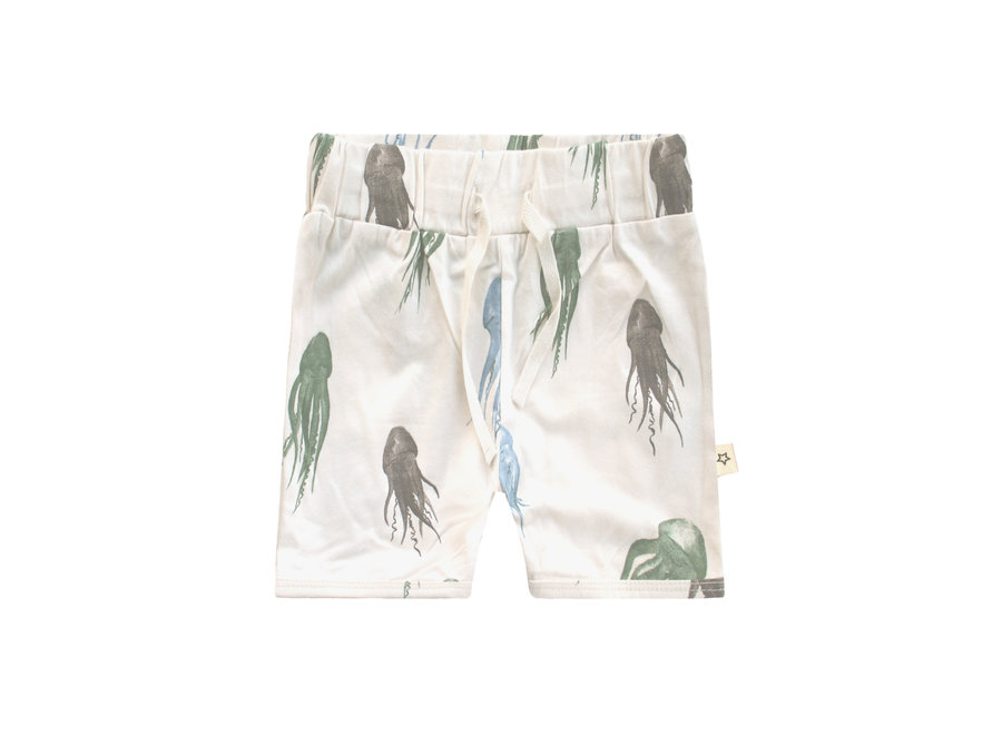 Jellyfish   Long Short