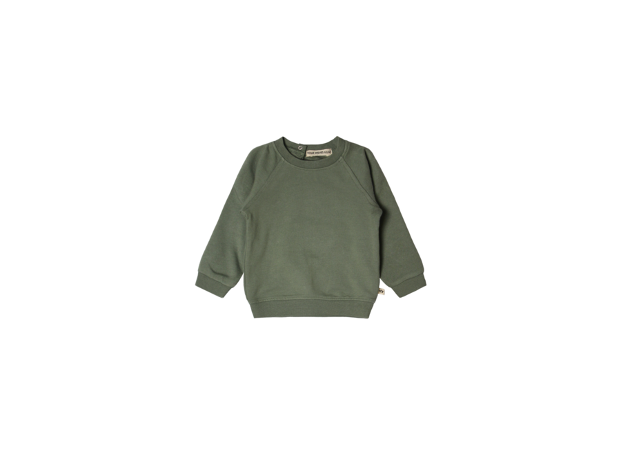 Solid | Sweater Old Green