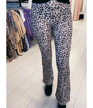 Cheetah Flair Beige