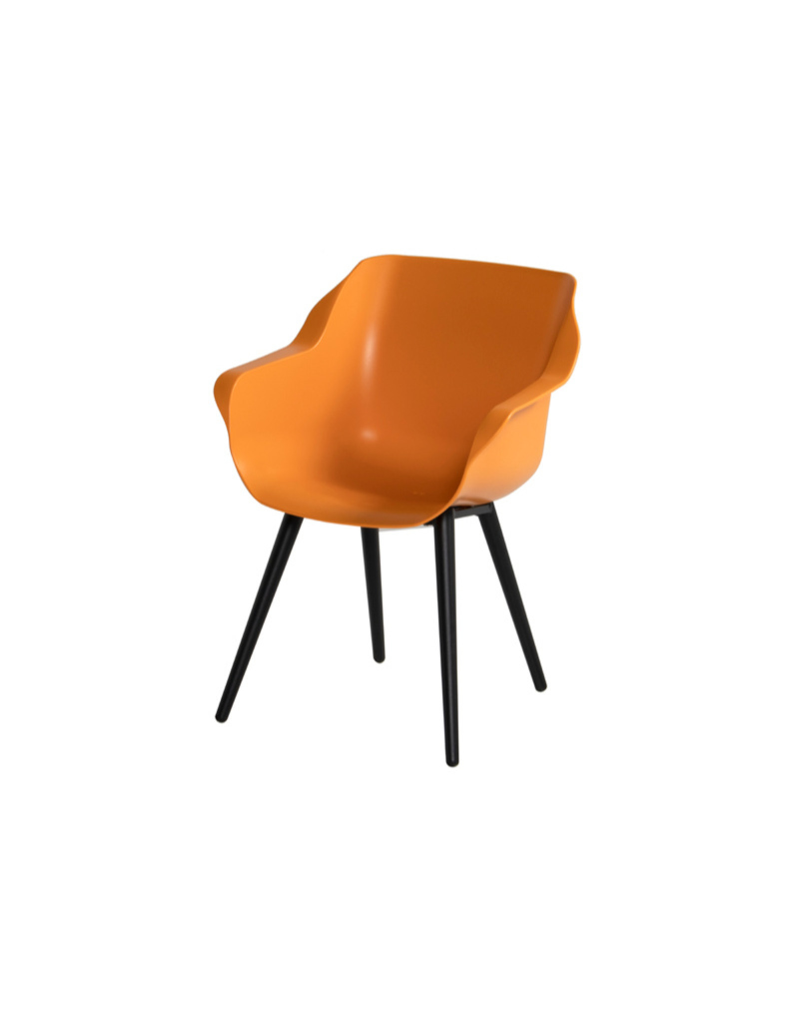 Hartman HARTMAN SOPHIE STUDIO ARMCHAIR with colored seat and carbon black legs