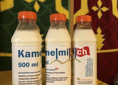 Kamelmilch