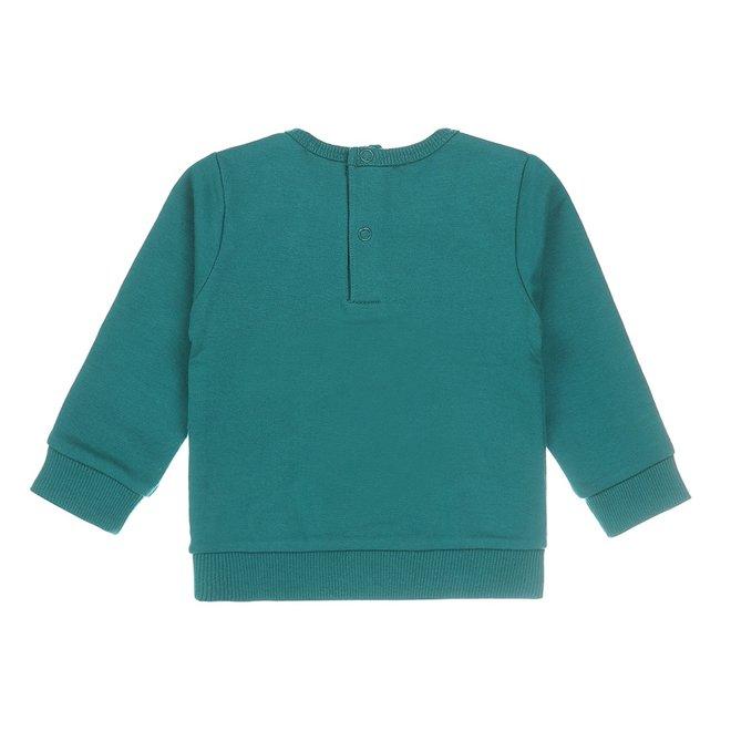 Dirkje Jungen Baby Pullover grün