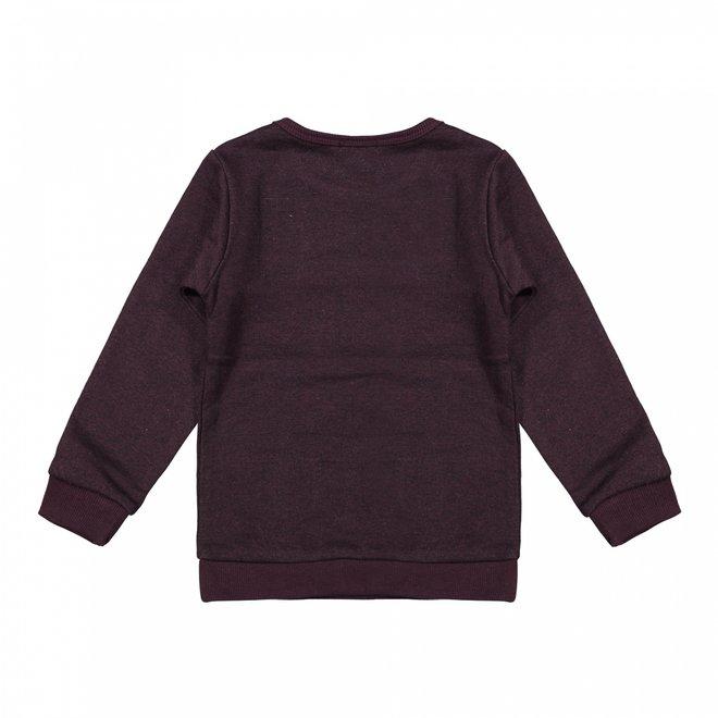 Dirkje jongens sweater bordeaux