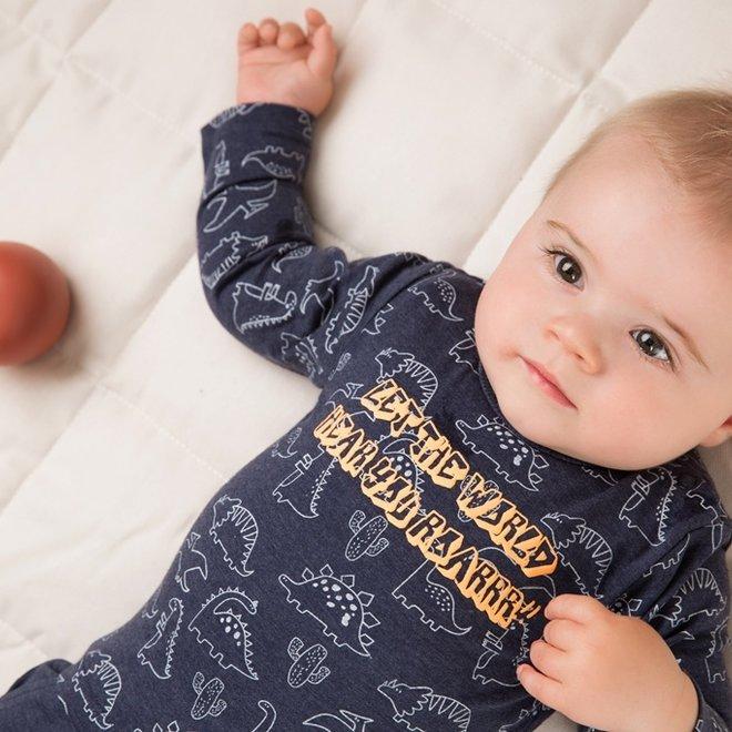 Dirkje jongens baby 2-delige set met broek blauw dino