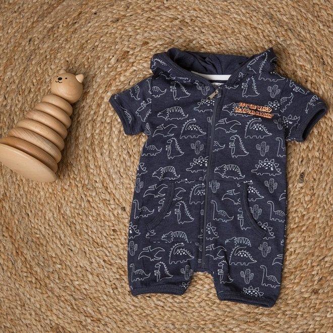 Dirkje jongens baby pakje blauw dinosaurus
