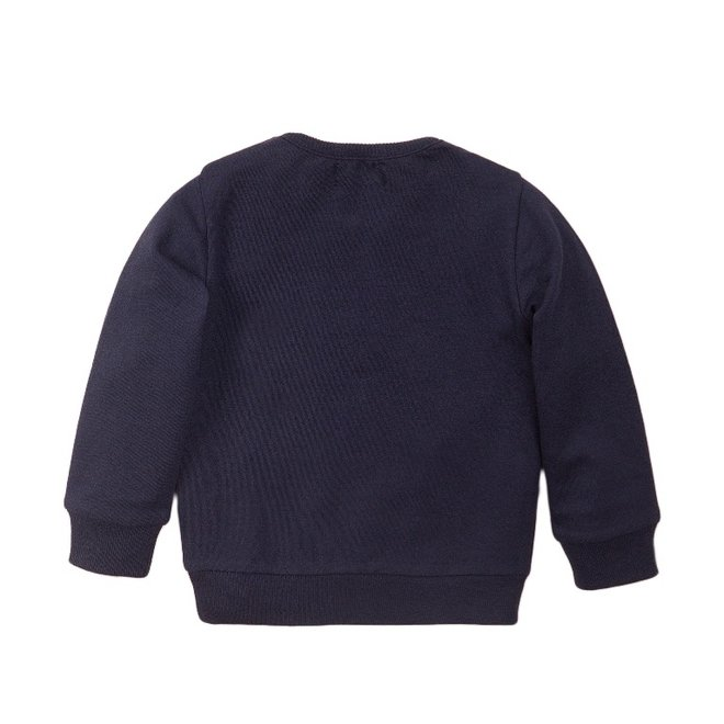 Dirkje Jungen Pullover blau